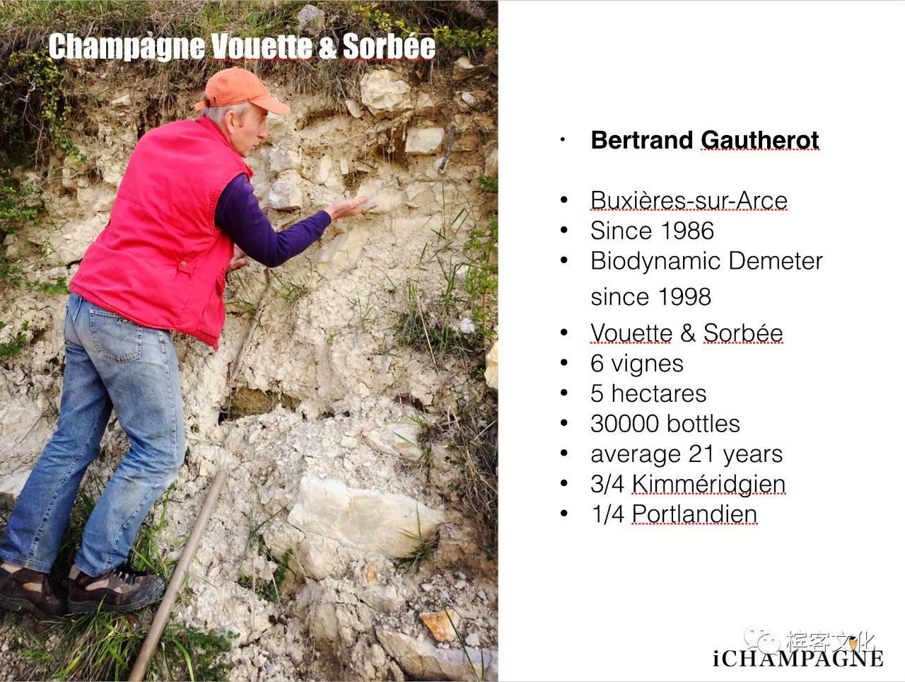 香槟的风土(四): 巴尔山坡Côte des Bars篇