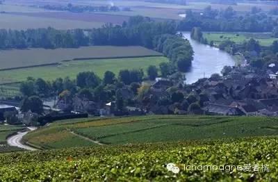 香槟的风土(二): 马恩河谷 Vallée de la Marne