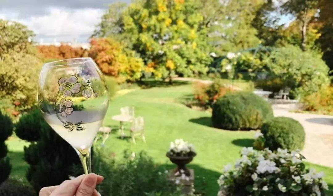 """活动   在大自然中,寻找""""香槟伊甸园"""""""